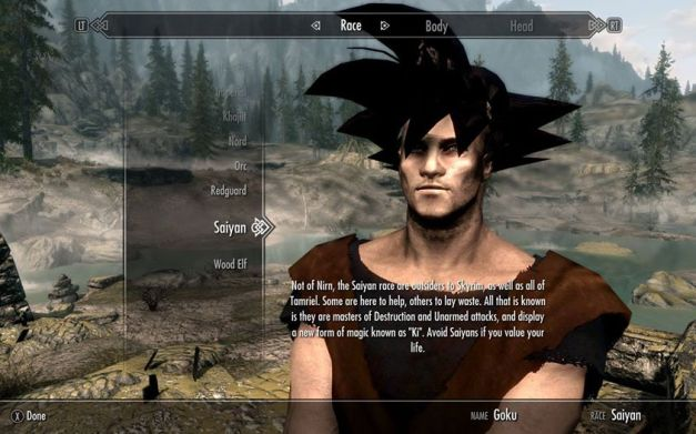 The Elder Scrolls V Skyrim - Goku mod