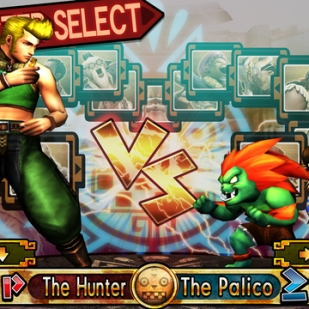 Monster Hunter 4 Ultimate - Blanka & Chun-Li Guild Card (1)