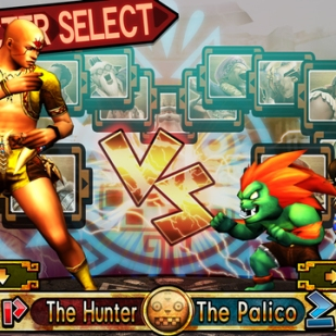 Monster Hunter 4 Ultimate - Blanka & Chun-Li Guild Card (2)