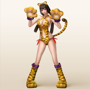 Samurai Warriors 4 II - Special Costume 2 (DLC) (11)