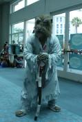 San Diego Comic Con 2015 - Galeria Cosplays (239)
