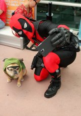 San Diego Comic Con 2015 - Galeria Cosplays (79)